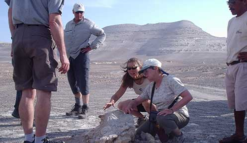Paleontology Tours in Ocucaje Desert 1